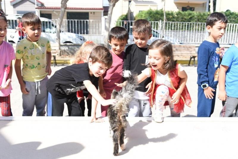 Karesi'de hayvan sevgisi büyüyor